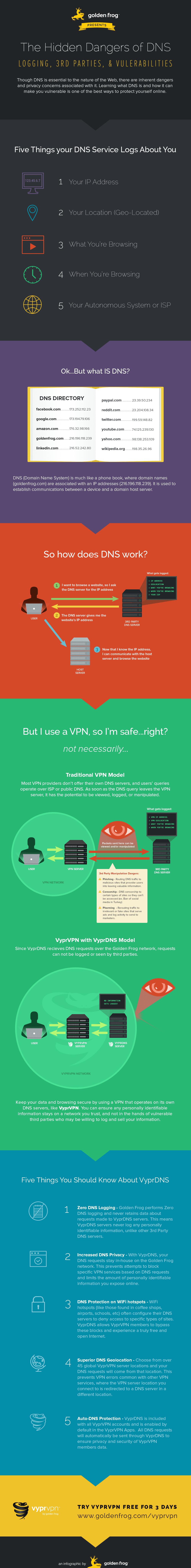 VyprVPN DNS Infographic
