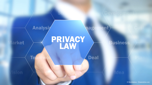 The challenge to enshrine internet rights in law