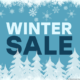 IPVanish Winter Sale