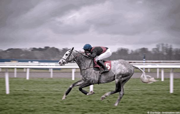 King George steeple chase