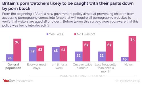 Porn block survey