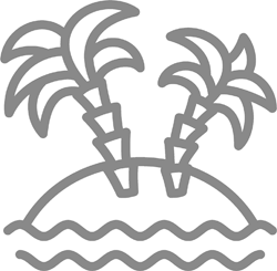 Palm trees on a beach illustration