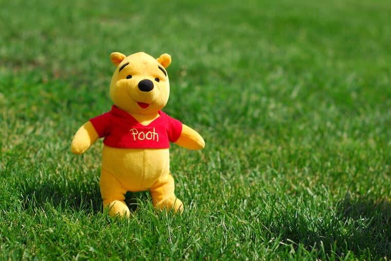 Winnie the Pooh stuffed toy on grass
